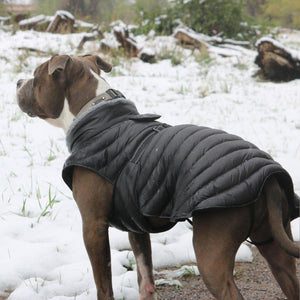 Alpine Extreme Weather Black Puffer Coat