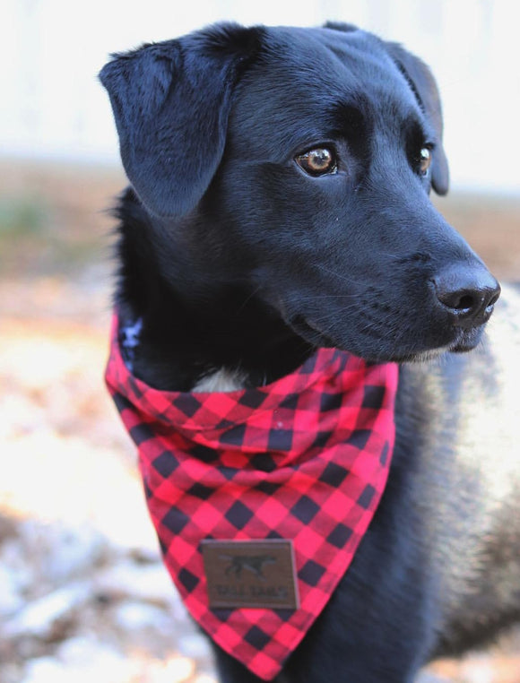 Plaid Red Bandana
