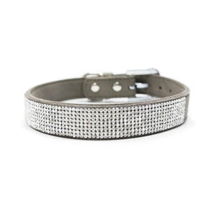 VIP Bling Dog Collar by Dogo - Gray