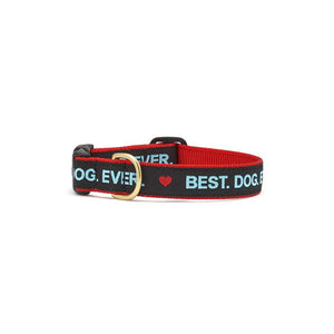 UpCountry Best Dog Ever Dog Collar