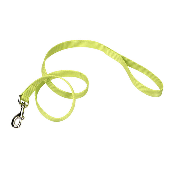 Coastal Single-Ply Dog Leash Lime 6ft