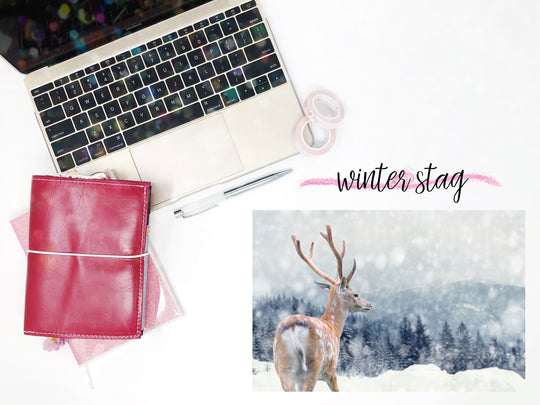 Winter Stag || Planner Fairy Mural Weekly Kit