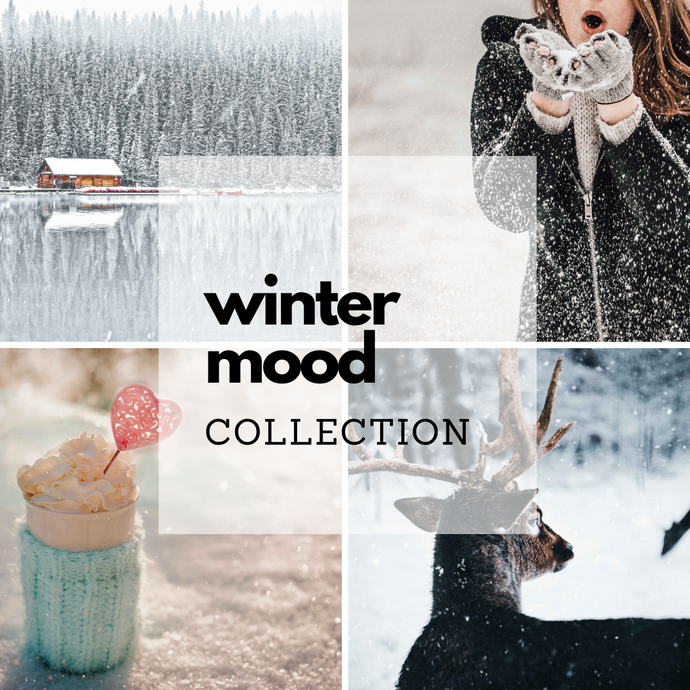Winter Mood Collection (4 Presets)