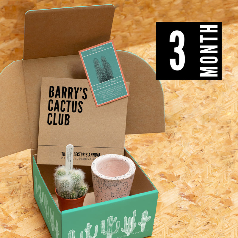 Barry's Cactus Club - Site Launching Soon