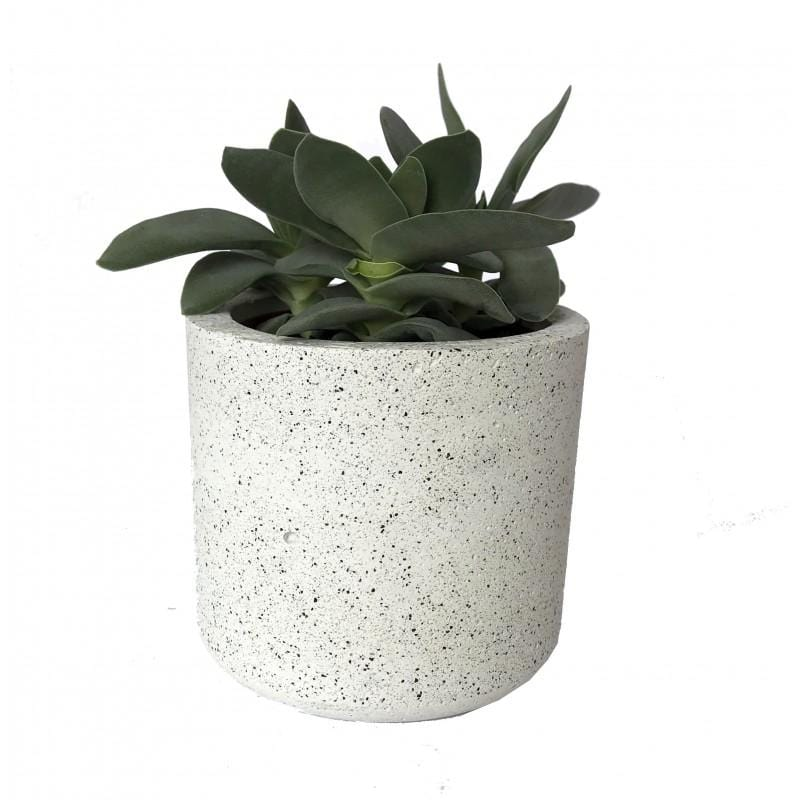 Cylinder Granite White Pot