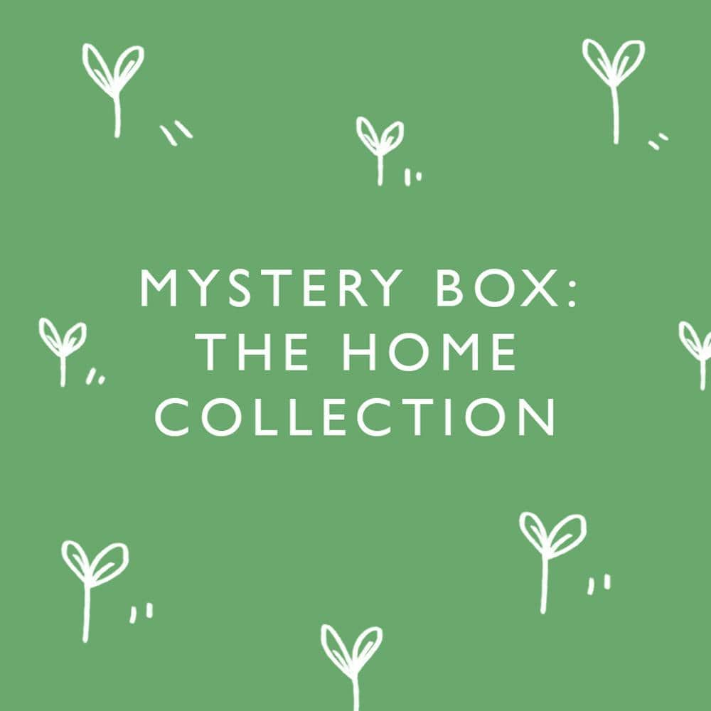 Mystery Box: Home Collection