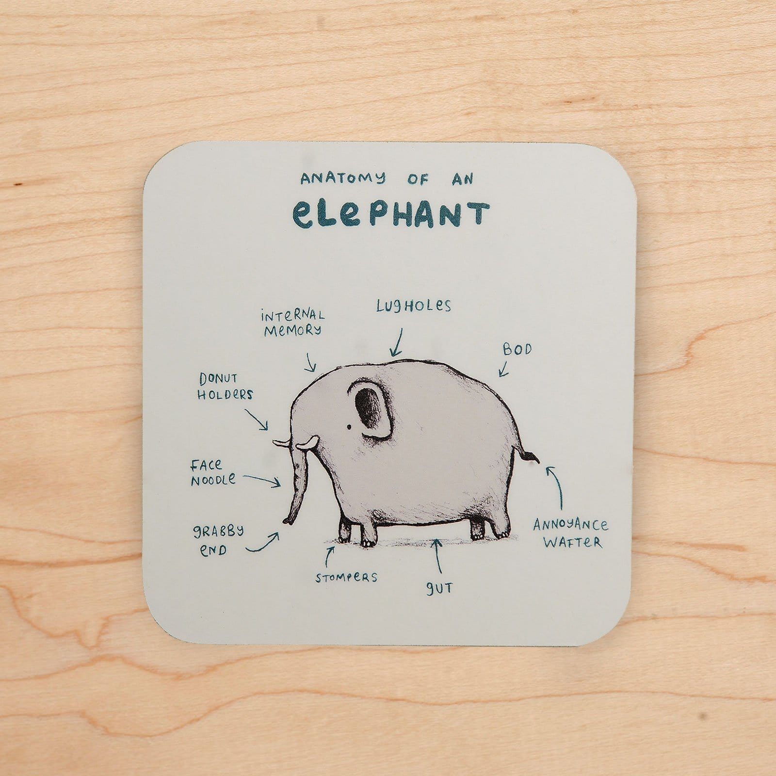 Elephant Anatomy Coaster