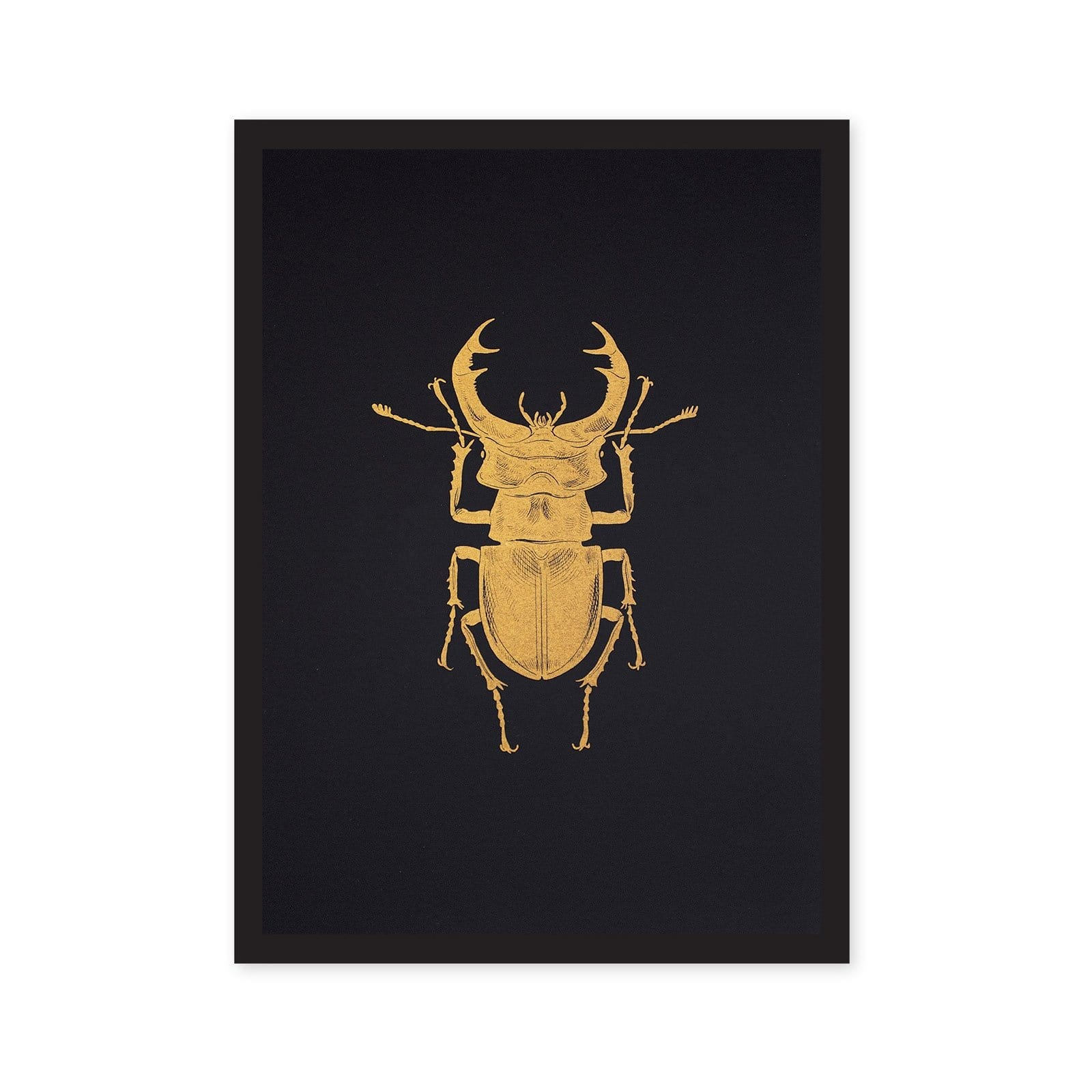 A4 Stag Beetle Riso Print