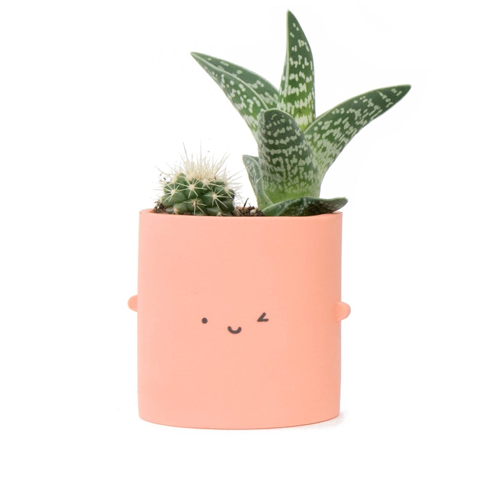 Peach Wink Pot