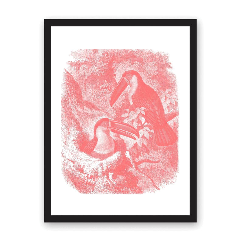 White art print in black frame, with pink and peach coloured toucans in tree illustration