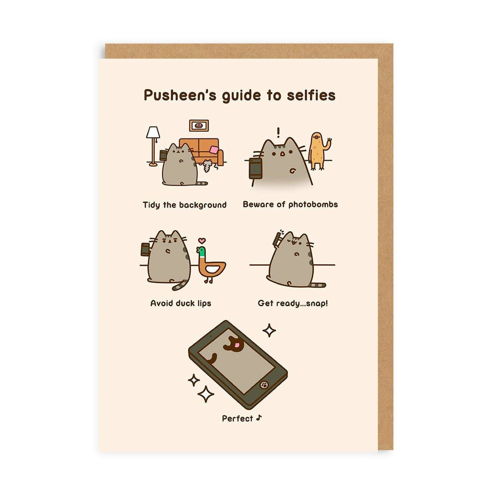 Pusheen Selfies Greeting Card