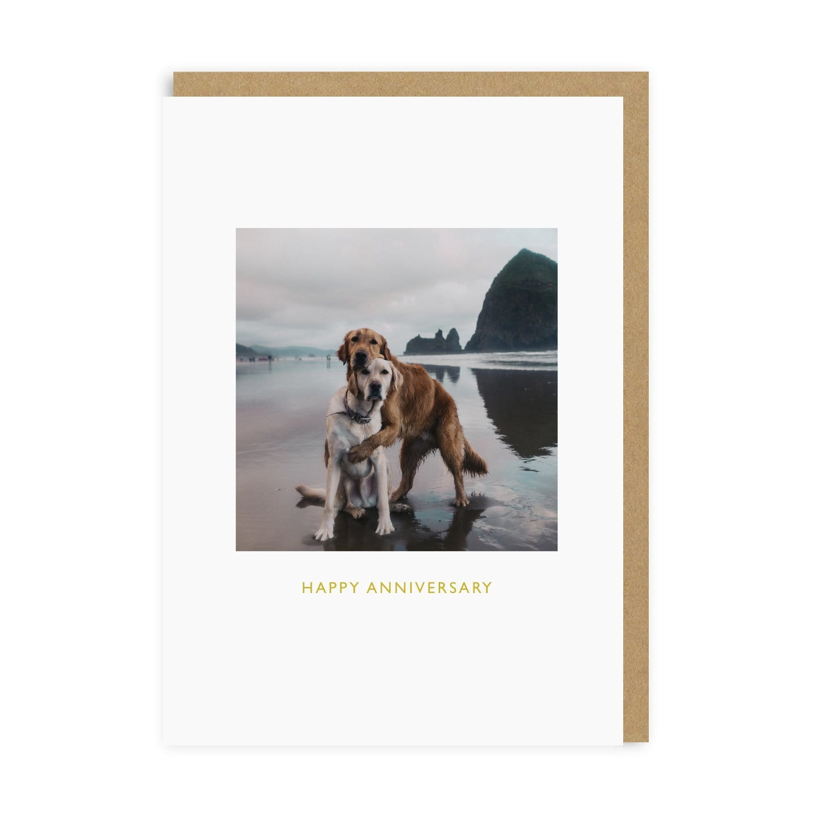Happy Anniversary Beach Dogs Greeting Card
