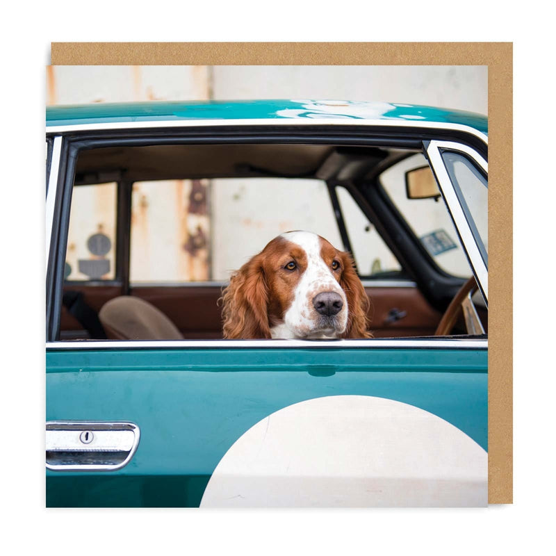 Dog In Car Square Greeting Card