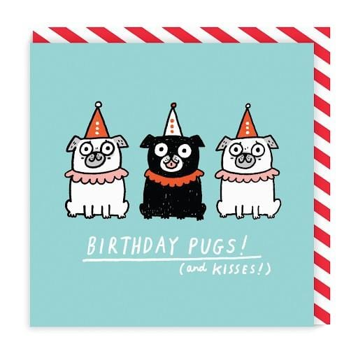 Birthday Pugs Square Greeting Card