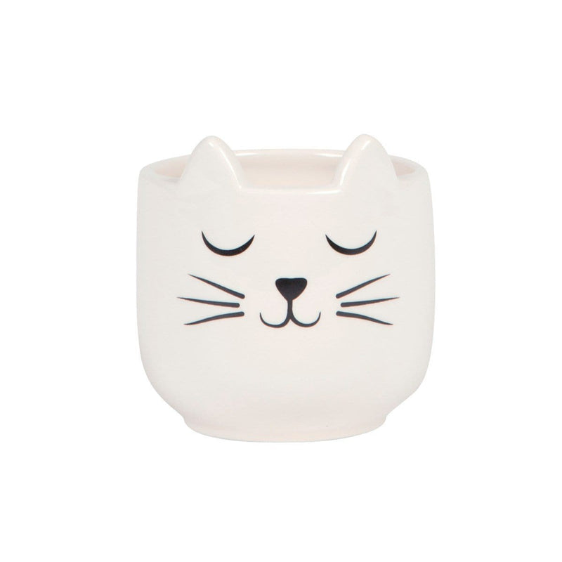 Cat's Whiskers Mini Planter