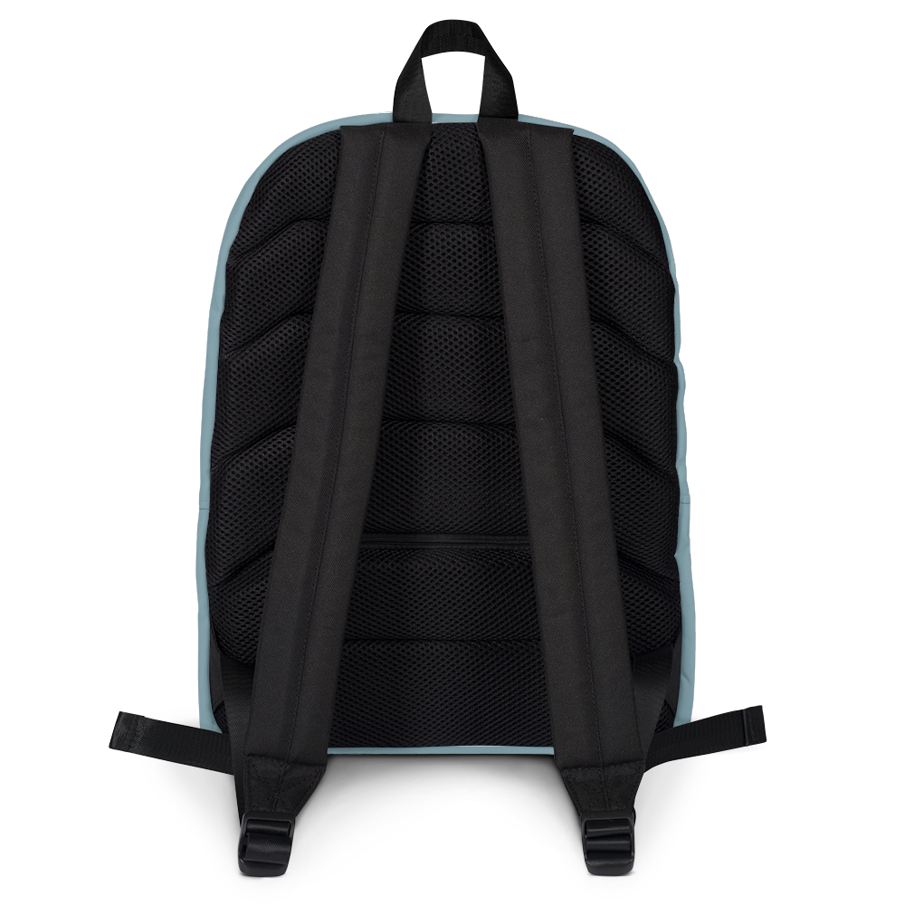 Bengaluru backpacks