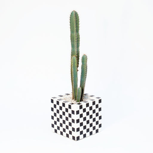 Tiled Planter - chessboard