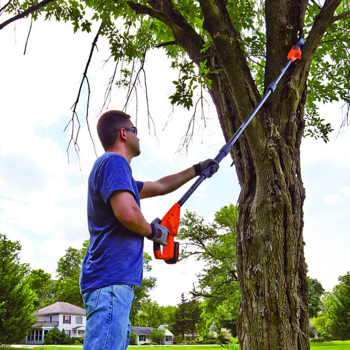 using the Black and Decker LPP120B Pole Saw on a branch