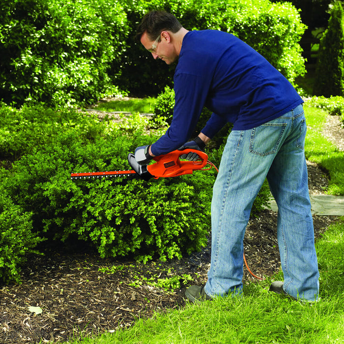 someone trimming a bush with the TR117 black and decker hedge trimmer standing up