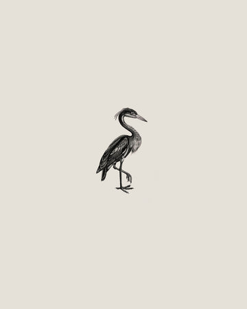 Heron - Sam Scales