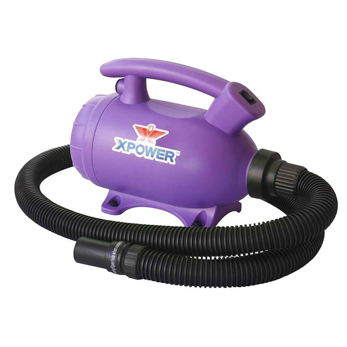 XPOWER B-55 2HP 100 CFM 8.0A 2-in-1 Home Force Air Pet Dryer + Vacuum Purple