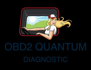 AUTO DIAGNOSTIC OBD2 SOFTWARES