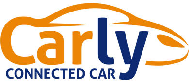 ✅Carly for BMW Pro 30.08 Full
