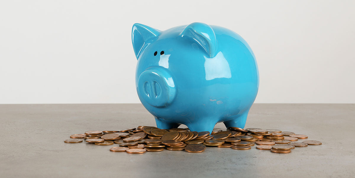 Image of Piggy Bank with coins