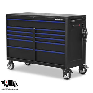 56 x 24 in. 11-Drawer Tool Cabinet