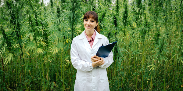 CBD: A Healthy and Powerful Plant Compound Used as Botanical Medicine for Generations