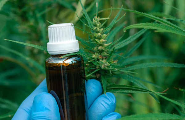 5 Confusing Questions About CBD That Need to Get Answered, Correctly