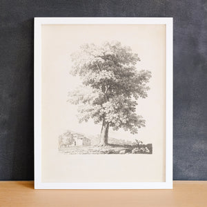 Tree Sketch with a Villa | Printed Artwork | 34