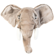 Load Image in Gallery View, Wild & Soft Animal Head - Elephant
