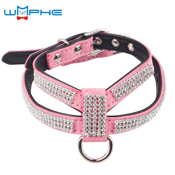 Fashionable Pet Collar