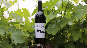 Slowfox Wines - Rejuvinating the Mudgee Wine Industry