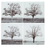 Seasons Glass Wall Art set of 4
