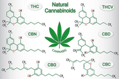 What is CBG | CBD Benefits | Benefits of CBG | CBD And Essential Oils | Cannabinoids | CBD Stick