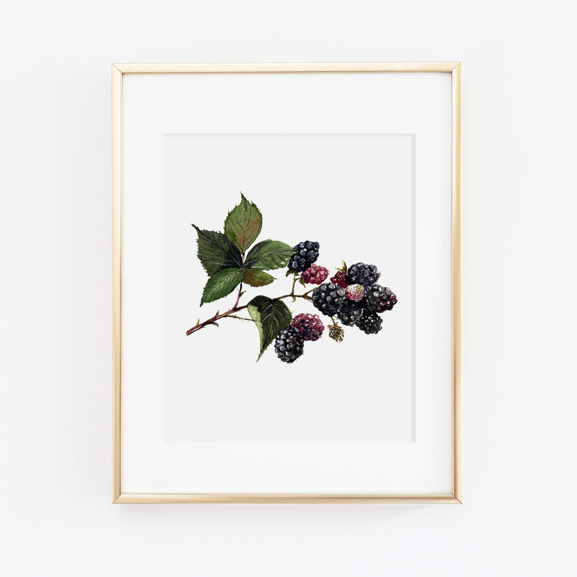 Blackberry Art Print