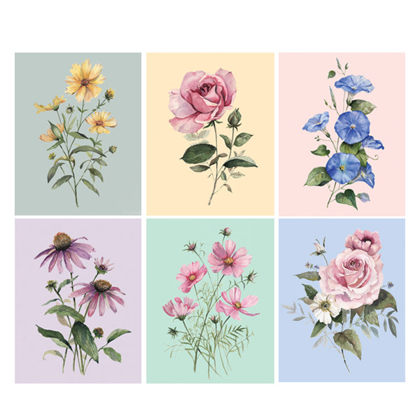 Florals of the Farm Assorted Greeting Card Box Set
