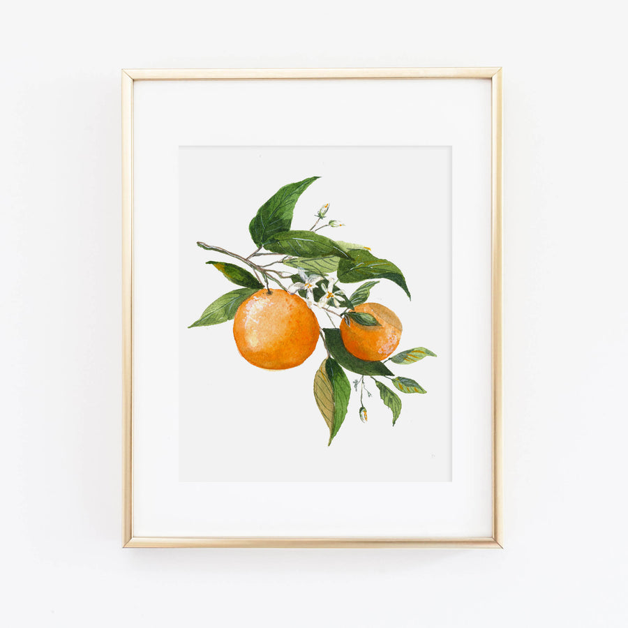 Orange Blossom Art Print