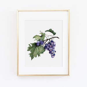 Grape Bunch Art Print