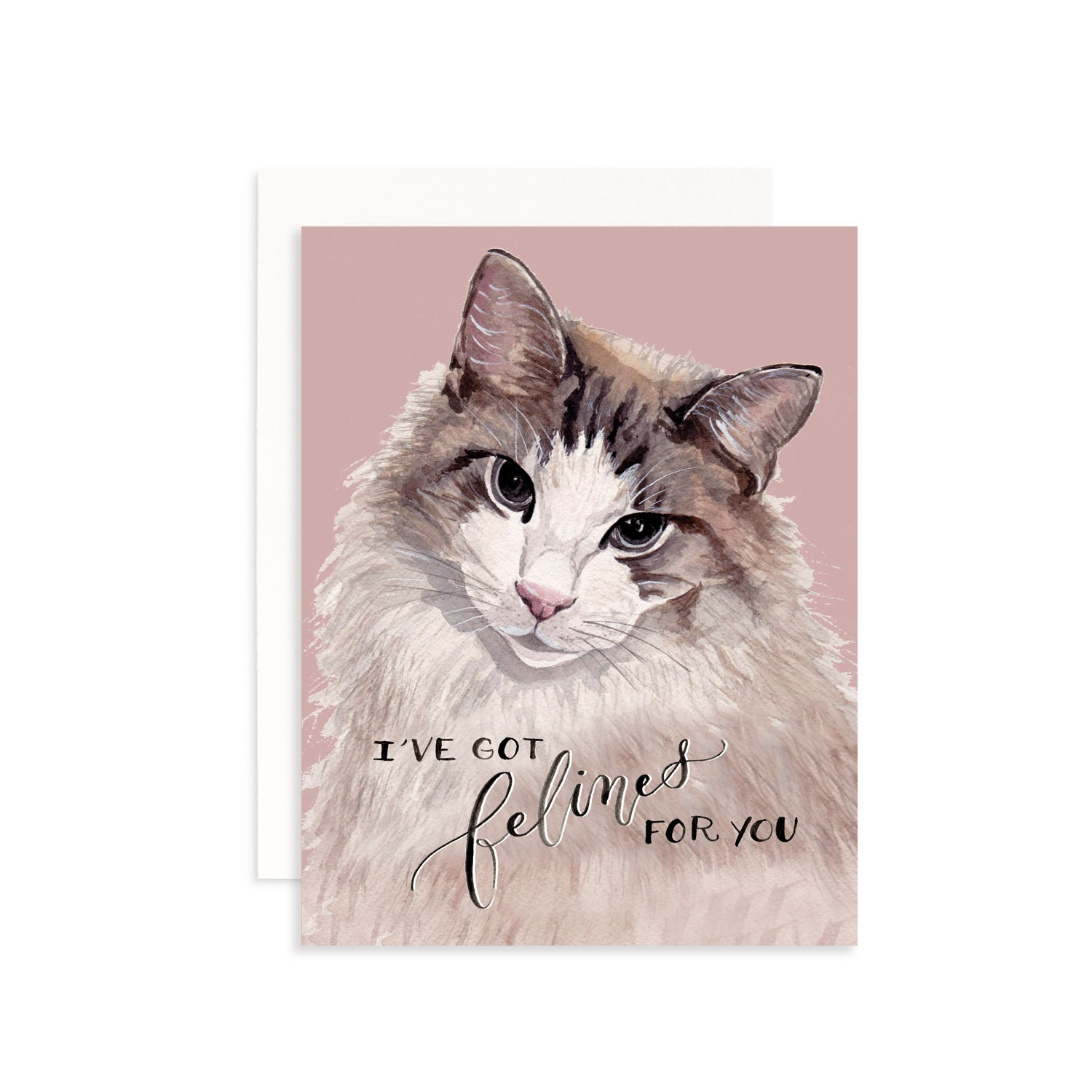 I've Got Felines For You Greeting Card