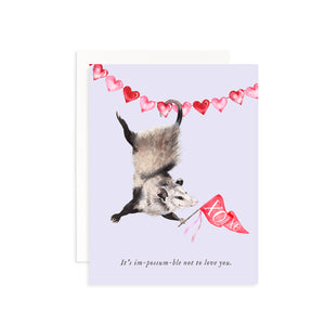 It's im-possum-ble Not to Love You Valentine's Day Greeting Card