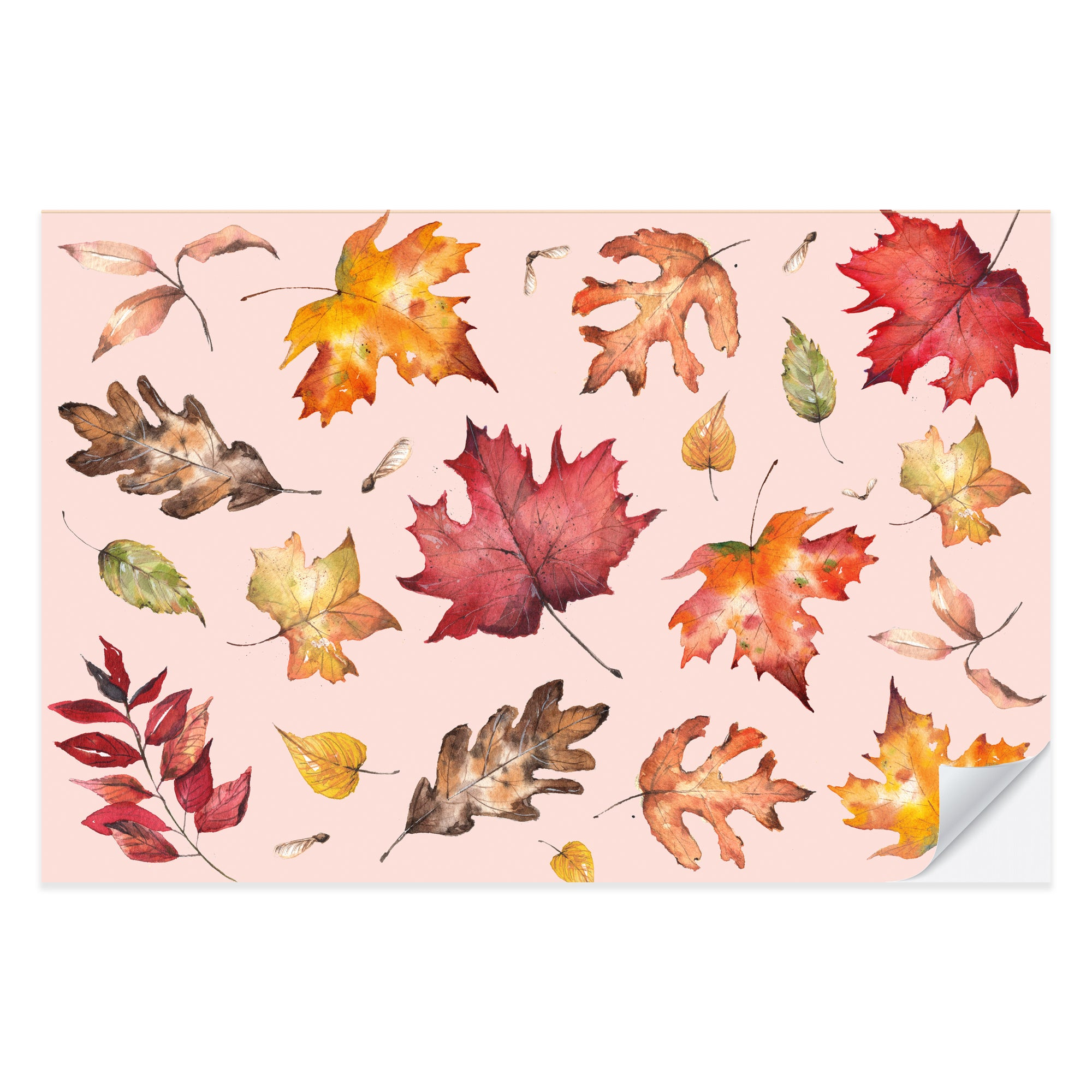Happy Harvest Placemat Pad
