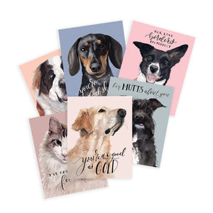 Valentine's Day Pets Assorted Greeting Card Box Set