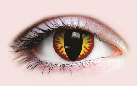 PRIMAL Dragon Contacts