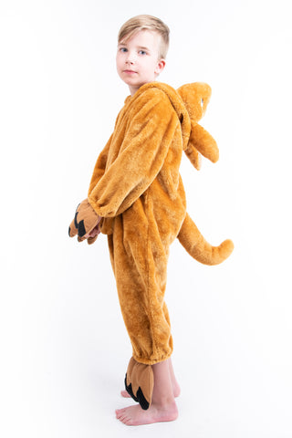 Boys Kangaroo Costume