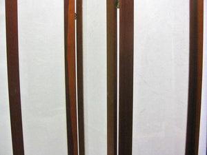 Pair of Textured Fiberglass and Teak Folding Screens