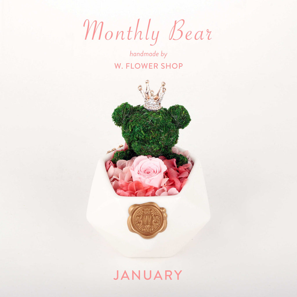 Monthly Bear - January