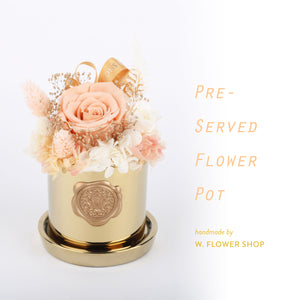 Preserved Flower Pot - Beige
